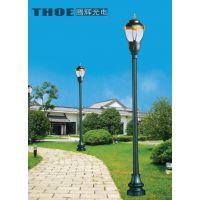 腾辉光电、太阳能庭院灯、20w太阳能庭院灯