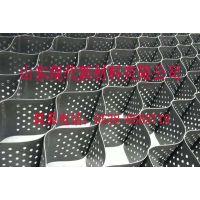 山东现代热销PE耐用土工格室 规格定制 PP格室品质保证