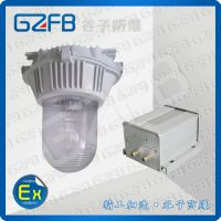 NFC9180 防眩应急泛光灯 吊顶式 谷子防爆 厂家直销