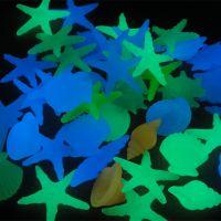 夜光海螺贝壳 发光贝壳 海螺 海星星 发光许愿瓶材料批发