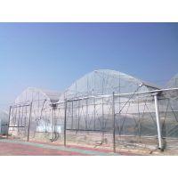 厂家直销蔬菜大棚单体大棚连栋大棚葡萄棚草莓棚骨架造价设计