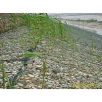 岸坡加固生态格宾石笼|砌岸格宾石笼网箱|