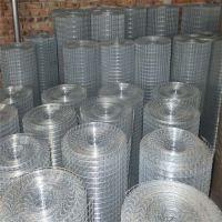 供应优质不锈钢电焊网 304材质 铁丝网笼子