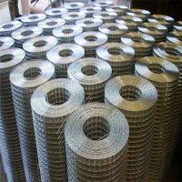 供应建筑碰网 高质量镀锌1/2″电焊网片 304 不锈钢丝网定制