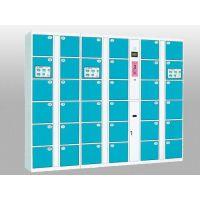 供应中立12门电容指纹寄存柜