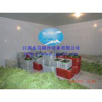 永昌厂家低价供应YC-8蔬菜保鲜库,蔬菜保鲜冷库安装