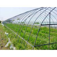 昆明蔬菜大棚管规格定做价格 农用大棚管总经销 15812137463
