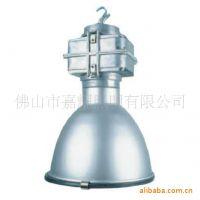 飞利浦 MDK900高天棚工厂灯具 白光/黄光