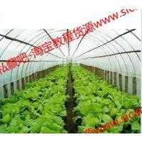 大棚蔬菜种植栽培技术大全/蔬菜视频教程 种菜技术+教程教材资料