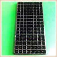 128穴黑色PVC吸塑育苗穴盘 景观园艺多肉育苗塑料穴盘加工定制