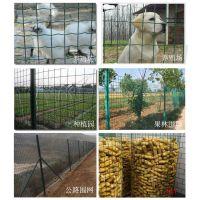 现货处理绿色养殖网 荷兰网圈玉米网 养鸡专用网