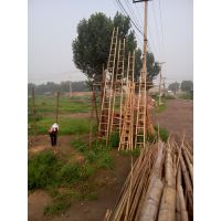 供应唐山腾福竹木优质3米-9米竹梯子