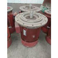 供应临朐B33-18.5KW摆线针轮减速机专用电机