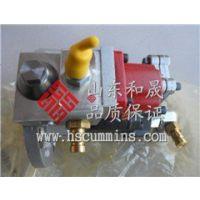 徐工XGC25T起重机(QSB6.7)增压器4955157