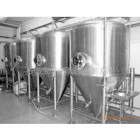 供应BAOJIE罐头机械:专业批发BJ101啤酒酿酒业不锈钢304/316发酵罐