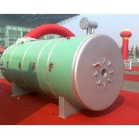艺能导热油炉|有机热载体锅炉除尘|有机热载体锅炉