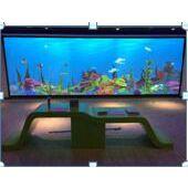 科技展品 科普展品 展馆设计 科技馆建设 教学仪器 厂家直销 互动水族馆 互动神笔