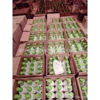 美国日用品如何进口到国内,TNT/FEDEX快递进口到中国香港