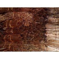供应东莞回收废红铜价格多少钱一斤