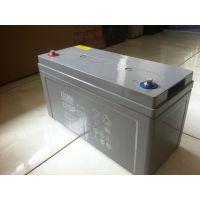 火炬观光车蓄电池3-DG-210厂家原装正品