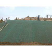银川三维植被网,公路边坡绿化,固土护坡