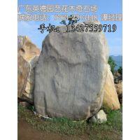 供应直销景观石 奇石 观赏石