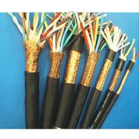 特种电缆 耐高温 计算机电缆 DJFPFP