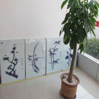 沧州圣盾电采暖设备厂批发销售:远红外碳晶电暖画、电发热板等等
