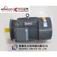 供应YD100L-4/2-0.8/3.1kw变极多速三相异步电动机|山东多速电机厂家,金力特专业品牌