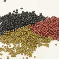 豆类供应  批发优质 精选 陕北红小豆 绿豆 黑豆 物美价廉