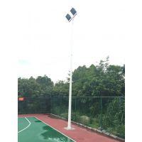 羽毛球场馆灯杆灯柱配套安装 户外篮球场灯杆照明器批发销售