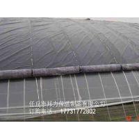 大棚骨架卷帘机花卉食用菌蔬菜大棚保温被 温室棉被 定做防寒防雨