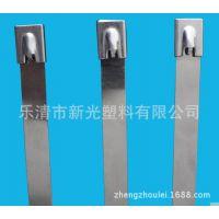 (厂家直销定做)304材质白钢自锁不锈钢扎带