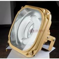 SBD1130 150W 免维护节能防爆泛光灯 瓯胜朗照明