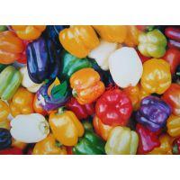 五彩甜椒种子 盆栽蔬菜种子 蔬菜种子阳台 家庭小菜园品种 10粒