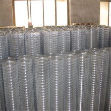 旺来不锈钢电焊网 镀锌电焊网铁丝网 圈玉米网