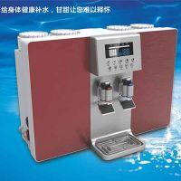 供应卓亚净水器直饮加热一体机RO反渗透家用净水器批发