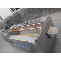 供应新款不锈钢生产U型毛辊芜菁清洗机【天顺】
