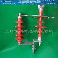 HY5WS-17/50C线路过电压避雷器 含绝缘子 10千伏保护线路