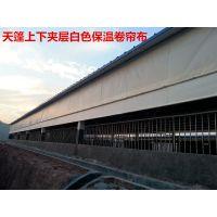 广西南宁防雨篷布厂专业供应0.44mm绿色0.5mm0.6mm特厚帆布