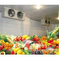 猕猴桃气调保鲜冷库安装工程造价预算水果气调库设计建造