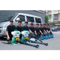 杭州灭鼠专家,清波灭鼠专家教你灭鼠方法,杭州灭老鼠公司