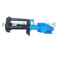 立式泵 液下泵 耐磨 耐普泵业 福建 山东 陕西