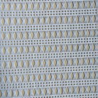 白色纬编涤纶蕾丝面料 高档服装服饰用布 柯桥厂家直销