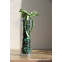 厂家直供 微景观 香薰  玻璃 创意多肉花瓶 礼品挂件 铁艺配饰