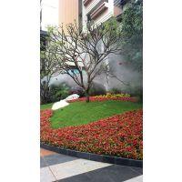 深圳人工造雾系统/公园人造雾雾效专家/自动化园林景观喷雾高效造雾机