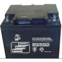 金狮蓄电池12V38AH厂家直销