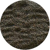 供应惠尔灵 优质 紫苏籽、紫苏、苏子