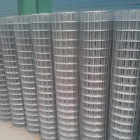供甘肃金昌电焊网和永昌浸塑电焊网价格