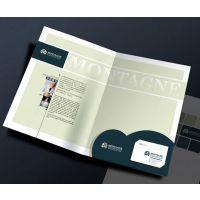 海报印刷DM派报印刷宣传单页印刷选上海松彩专版印刷厂